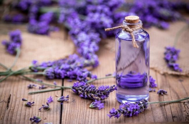Tinh dầu mọc tóc Lavender