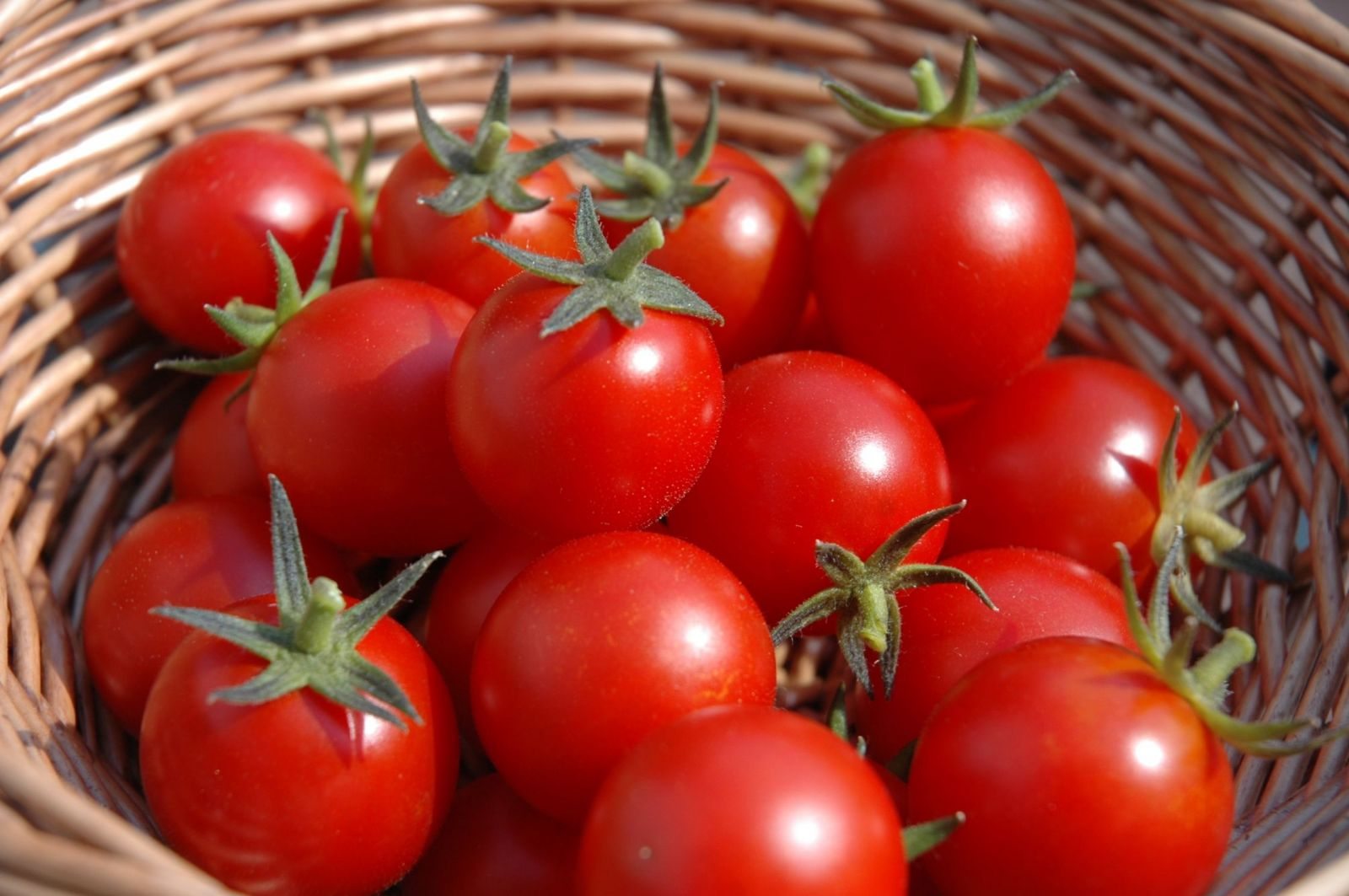 cà chua trị thâm mụn